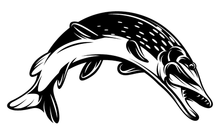 Vector monochrome illustration with a pike for design on a fishing theme