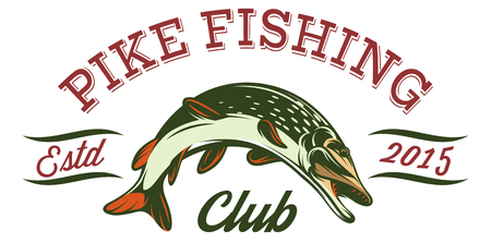 Vector illustration in sport style for fishing with pike. Ilustracje wektorowe