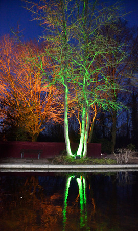 Magical lights in Grugapark, Germany photo