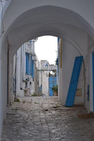 tunisia: A door for Tunisia