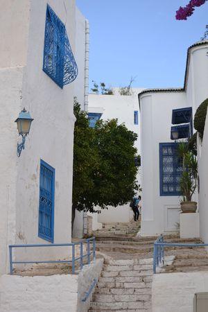 tunisia: Street, Tunis, Tunisia, North Africa, Africa