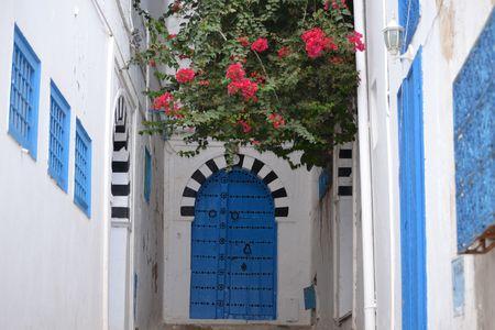 typical: Typical Door