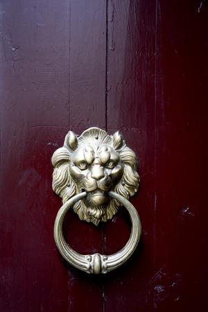 door knocker: Door Knocker