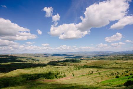 scenery: China northern grassland scenery in summer
