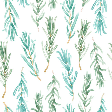 Watercolor Rosemary pattern seamless, green rosemary decoration, craft label design bio food, vegetarian natural banner, restaurant menu background Imagens