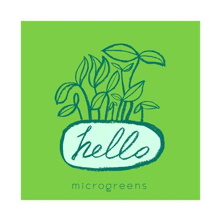 Microgreens cultivation label tag. Vector hand-drawn growth logo. Vegetable greens, baby greens, soil line, seeding, baby plants, home cultivation, greenhouse, farmers market, sprouting plants - Eco. Illustration