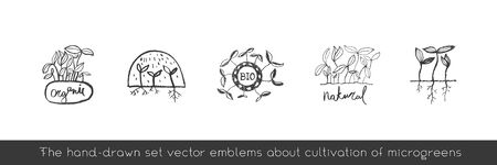 Vector hand-drawn emblem for agricultural logo with microgreen concept. Eco emblem with growing leaf for label of baby plants. Growth icon with vegetable greens for bio company and home cultivating.