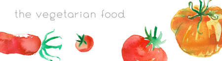 Horizontal banner Bio food with watercolor Illustrations of tomatoes. Natural food banner template with hand drawn tomato illustration. Healthy eat concept. Healthy eating ingredients - background.