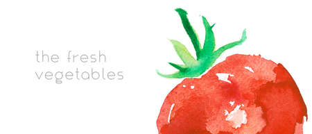 Vegetarianism horizontal template banner. Bio food background with watercolor tomatoes. Natural vegetarian food backdrop with tomato paste illustration. Vegetable kitchen for Healthy eating - Diet.