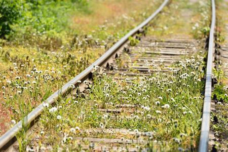 The abandoned railway was overgrown with grass, near the city.