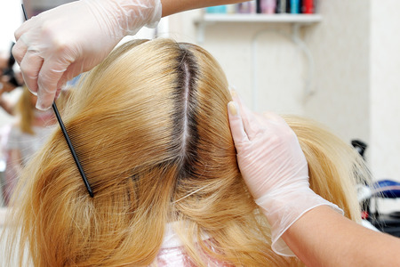 The hairdresser shows how the dyed hair has grown and can see the difference in color. Stock Photo