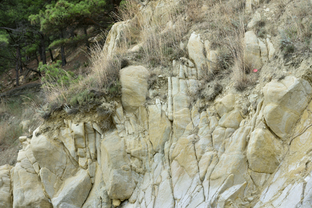 Sandstone stone rock with large cobblestones of yellowish brown color. Stok Fotoğraf