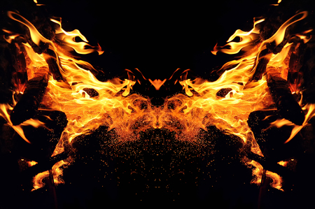 Abstraction, burning fire with sparks. Mystical type of butterfly or cat head. Close-up