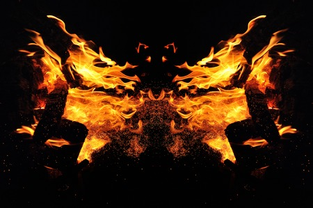 Abstraction, burning fire with sparks. Mystical type of butterfly or animal head. Close-up