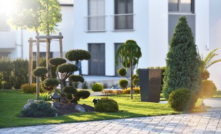 Beautiful modern flowerbed with coniferous bushes and a bonsai tree on the background of a modern house