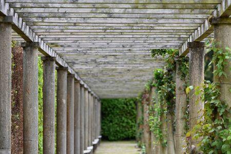 Long pergola with rose climbing plants in a European public park in Baden Baden