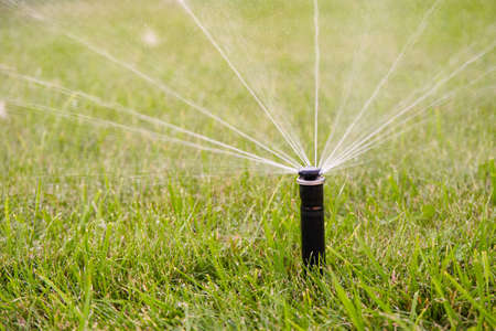 Automatic watering system watering the lawn in the home garden