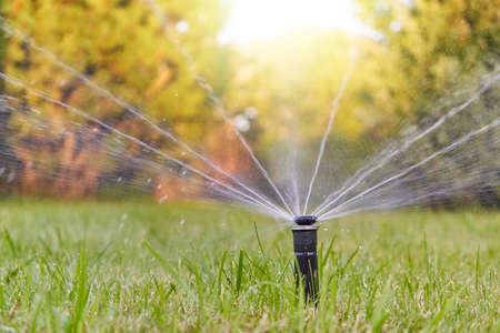 The lawn is watered by an automatic watering system in the garden