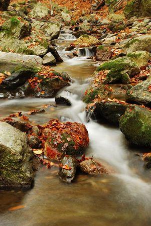 Autumn Creek photo