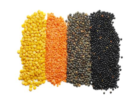 different types of lentil photo