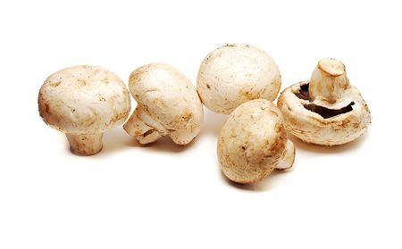mushrooms isolated Stock Photo - 4272352