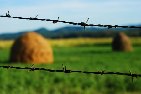 fenceline: barbed wire over rural landscape Stock Photo