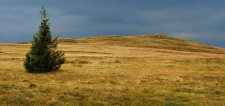 stormy landscape photo