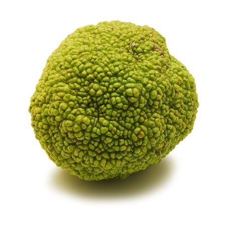 hedgeapple: hedge apple isolated