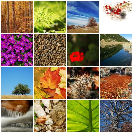 Natur  Herbst collage