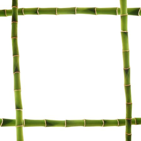tropical border: bamboo frame Stock Photo