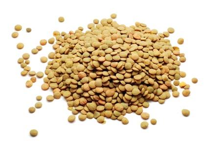 lentil: lentil