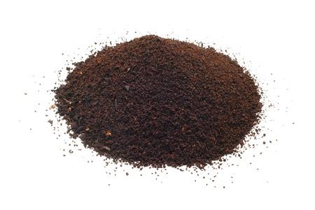 plantas de t� negro Foto de archivo - 8766507