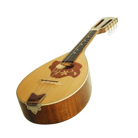 mandolin photo