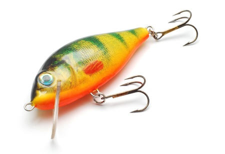 fishing tackle: fishing lure