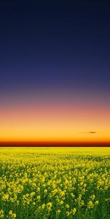 sunrise Stock Photo - 9523874