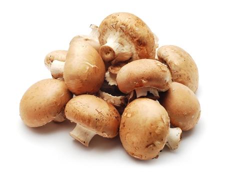mushrooms: mushrooms Stock Photo