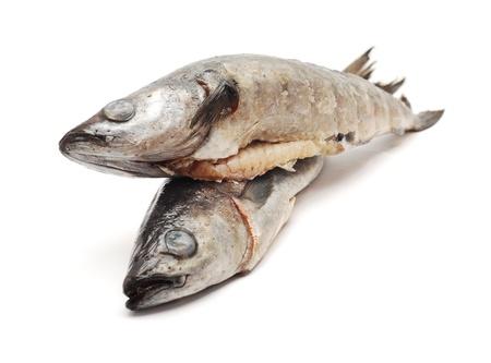 cod: cod fish  Stock Photo