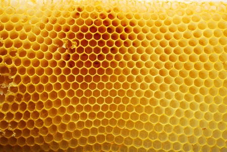 beeswax: honeycomb texture