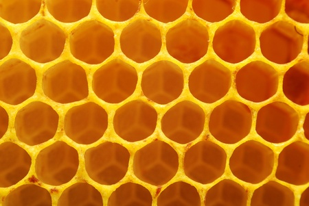 honeycomb texture photo