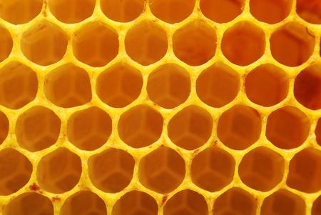peigne: la texture en nid d'abeille