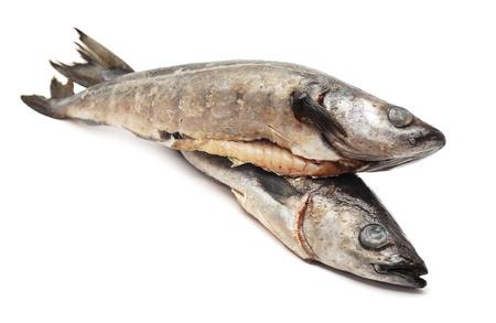 codfish: cod fish  Stock Photo