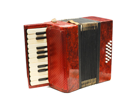 accordion  photo