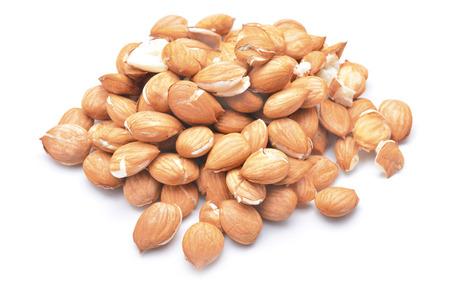 kernel:  apricot kernel