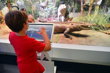 bucharest:  A child using touchscreen and learning the animals at the National Museum of Natural History Grigore Antipa in Bucharest