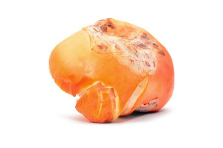 caesarea: amanita caesarea mushroom