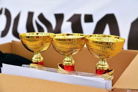 achievment: trophies