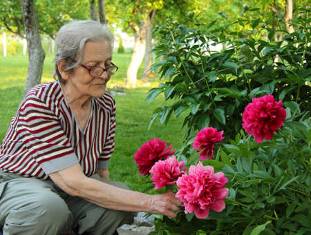 Senior Woman and Flowers Stock Photo