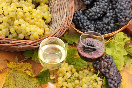 Wine and Grapes Stock Photo - 15274820