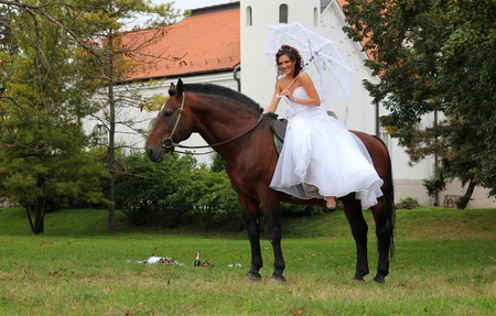Happy bride sitting on horse in a park photo