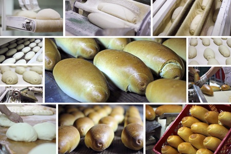 Production of bread at the bakery photo